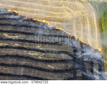 Burned Mowing Of Straw In The Field, Air Pollution Due To Burning Of Plant Remains, Burning Of Grass