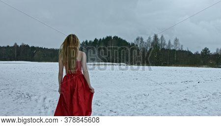 Beautiful girl in long red dress. Walk on grassland. Winter scenery.