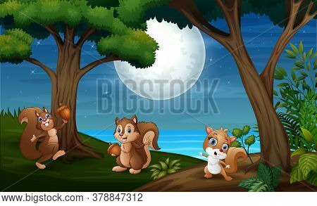 Illustration Of Night Forest With Three Squirrel