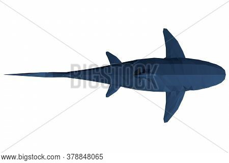 Low Poly Blue Shark. 3d. View From Above. Vector Illustration