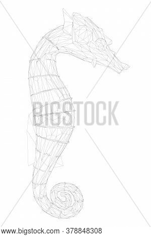 Wireframe Of A Seahorse Made Of Black Lines On A White Background. Side View. 3d. Vector Illustratio