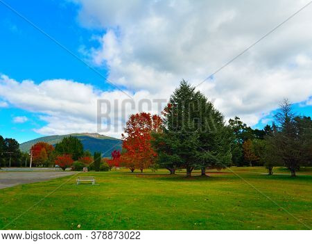 Colourful Autumn Park In Turangi Town With Magnificent Mountains Of Tongariro National Park In The B