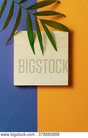 Tropical plant leaf and wooden block on blue and orange paper background. Flat lay, top view, minimal design template with copyspace.