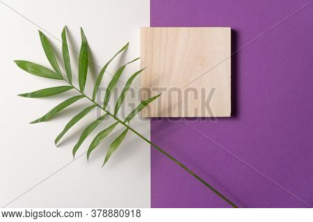Tropical plant leaf and wooden block on violet and white paper background. Flat lay, top view, minimal design template with copyspace.