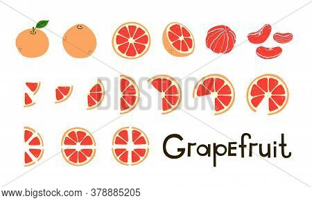 Citrus Fruit. Grapefruit Whole And Cut, Half And Slices. Vitamin C. Set Of Positive Modern Vector El