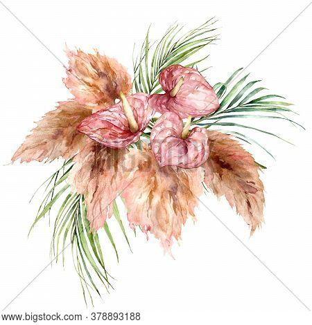 Watercolor Tropical Bouquet With Anthurium, Dry Pampas Grass And Palm Leaves. Hand Painted Tropical
