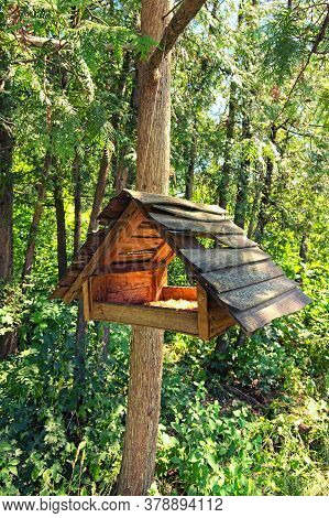 Nice Wooden Bird Feeders. Wooden House For Birds In The Forest. Outdoor Bird Feeder. Bird Feeders In