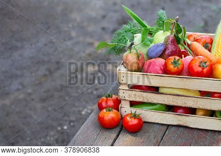 Fresh Eco Vegetables And Fruit On Wooden Crate Or Box On Rustic Table In A Garden. Space For Text