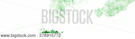 Garden White Background. Spring Watercolor Illustration. Artistic White Background. Hand Drawn Organ