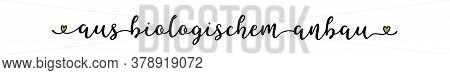Hand Sketched Aus Biologischen Anbau Quote In German As Ad, Web Banner. Translated From Organic Farm