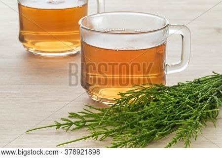Glas cup with hot field horsetail herbal tea and fresh green twigs close up