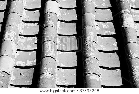 The Chinese Roof Tiles