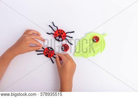 Diy Kids Craft Using Plastic Bottle Cap, Recycled Craft Ideas, Creative Project Ladybugs
