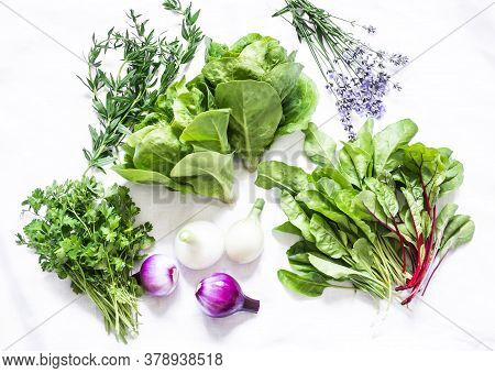 Fresh Aromatic Garden Herbs And Vegetables On A White Background, Top View. Spinach, Coriander, Roma