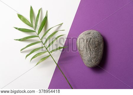 Tropical plant leaf and pebble stone on violet and white paper background. Flat lay, top view, minimal design template with copyspace.