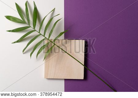 Tropical plant leaf and square wooden block on violet and white paper background. Flat lay, top view, minimal design template with copyspace.