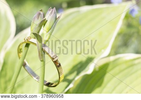 A Gold Bracelet With Rhinestones Is On Stems With Hosta Buds