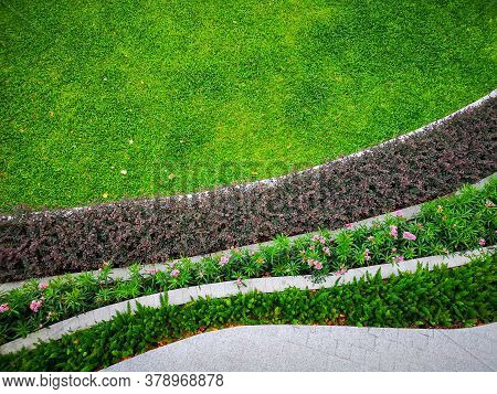 Top View Image, Fresh Green Burmuda Grass Smooth Lawn As A Carpet With Curve Form Of Colorful Flower