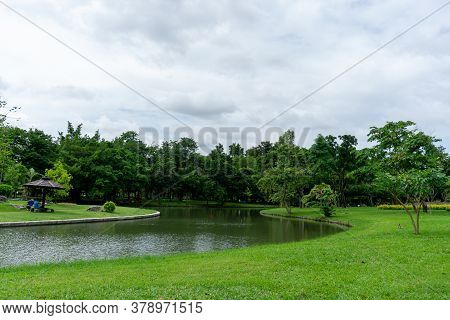 A Small Clean Lake In Public Park, Greenery Trees, Shrub And Bush, Green Grass Lawn In A Good Care M