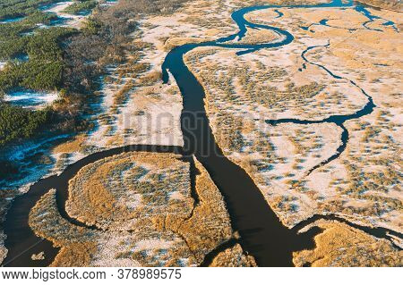 Belarus. Aerial View Of Dry Grass And Curved River Landscape In Early Spring Day. High Attitude View