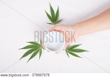 Beauty, Body Care Cosmetics With Marijuana Extract. Body Scrub In Hand With Cannabis Plant Leaves Is