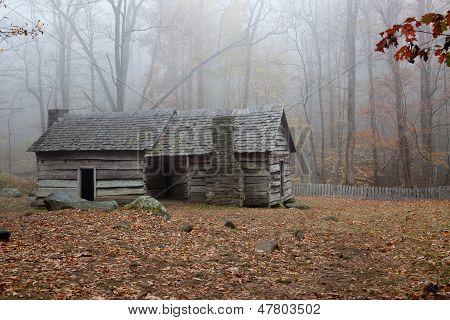 Misty morning cabin