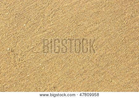 Yellow Sand. Texture.