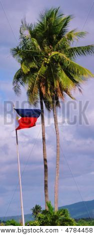 Flag And Coconut