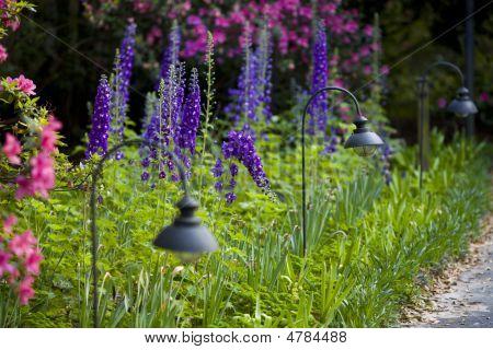 Bellingrath Garden Walkways