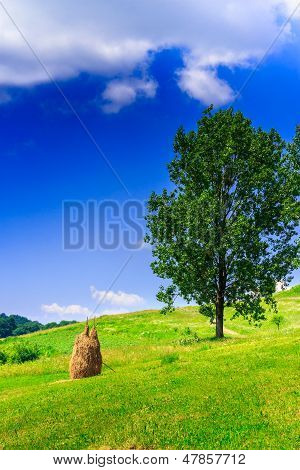 Mountain Stack Of Hay With Trees Vertical