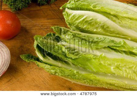 Crisp Romaine Lettuce