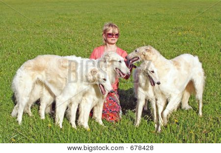 Irina Korshunova - the Moscow cynologist with the thoroughbred borzoi dogs.  Russian borzoi  dog - very courageous and fast hunting dog. Works on a hare, the fox and even the wolf. poster