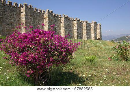 Kervansaray Sarapsa Han, Turkey