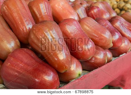 Asian Rose Apple