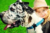 Happy little girl with her mastiff dog on a meadow in summer day. poster