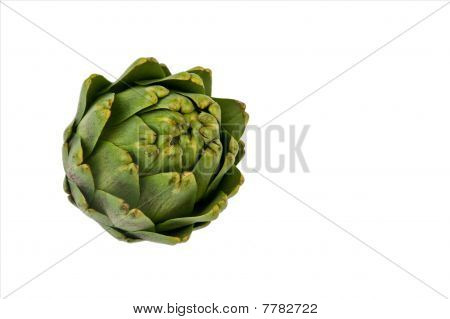 Artichoke With Clipping Path