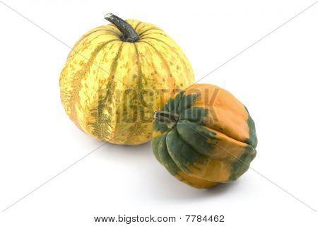 Two Miniature Ornamental Pumpkins