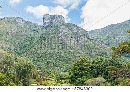 Castle Rocks On Table Mountain