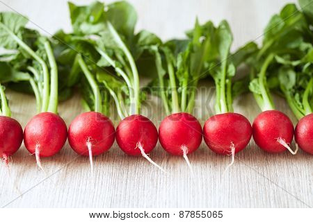 Clean eating radishes on white wooden background