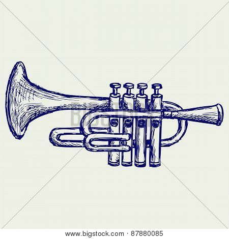 Trumpet, musical instrument.