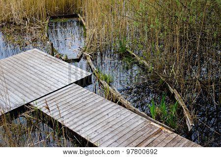 Abandoned Sunken Overgrown Rowboats