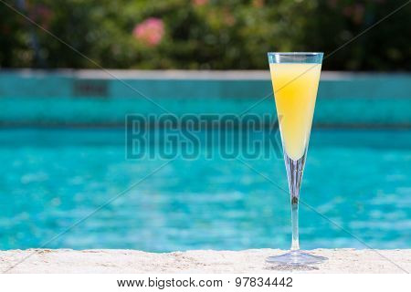 Glass Of Mimosa