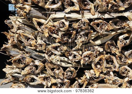 Dried Fish In Norway