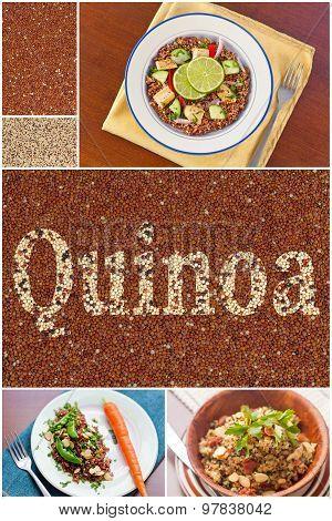 Quinoa Salad Collage