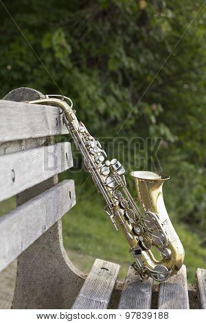 Saxophone Lake Park Bench