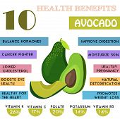 10 Health benefits information of Avocado. Nutrients infographic vector illustration. - stock vector poster