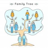 Vector illustration in linear style. Flat icons. Family tree: mother, father, daughter, son, grandfather, grandmother. People of different ages in outline style: girl, boy, woman, man, seniors. poster