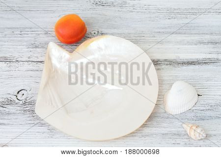 Summer background with pearly seashell small shells and fresh apricot