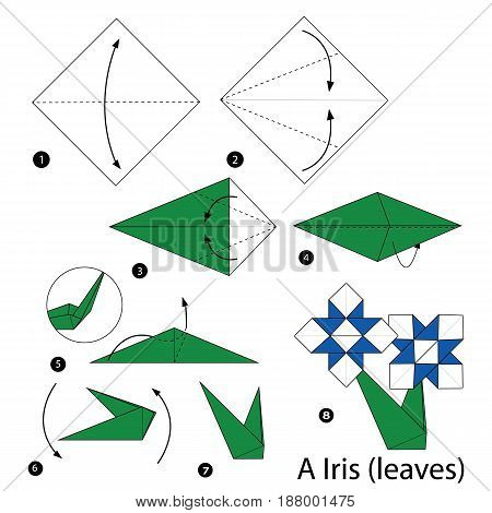 step by step instructions how to make origami A iris (leaves).