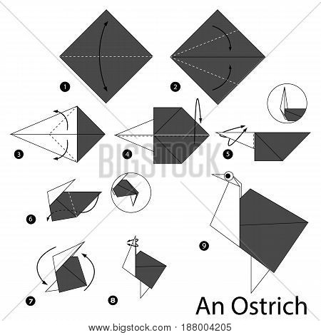 Step by step instructions how to make origami An Ostrich.